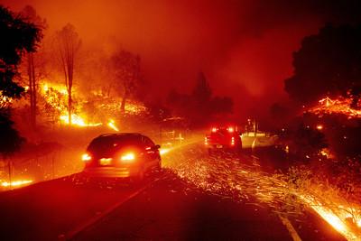 加州野火 川普揚言撤回聯邦資金