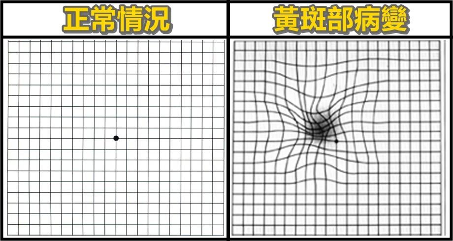 大檸檬用圖(圖/記者黃姵潔攝)