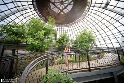 嘉義最美溫室蝴蝶園還有巨大昆蟲模型