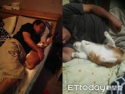曾批養貓叫不來 阿公主動抱孫睡