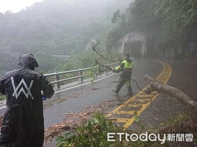 蘇花142.8K路樹倒塌 兩線變單線