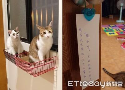 貓奴掛「防偷紙條」 網笑:重點誤