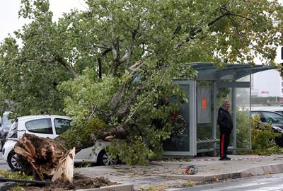 法國暴風雨 14萬人斷電成受災戶