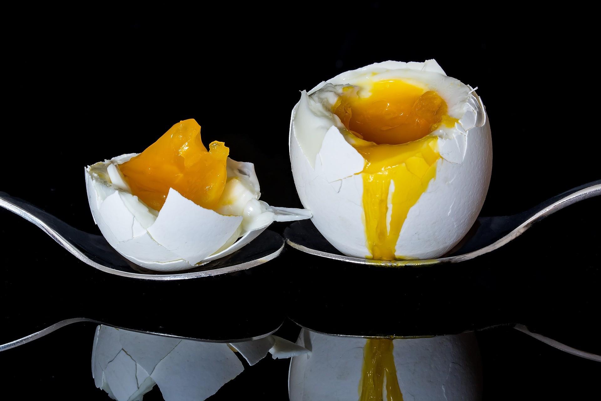 ▲▼蛋,雞蛋,水煮蛋。(圖/取自免費圖庫Pixabay)