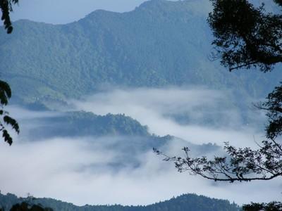 秋季微旅行!到新竹看雲海、瀑布