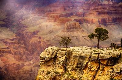 懸崖邊「倒退2步」幫拍照 她腳滑差點跌落深谷