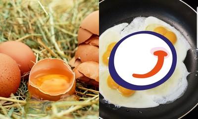 樓下超商買雞蛋 連打5顆都是雙蛋黃驚呆