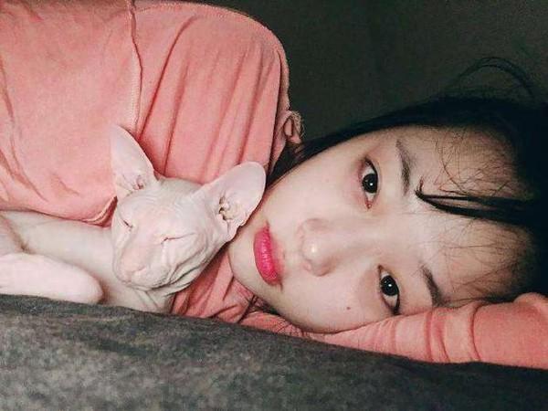 ▲▼希澈直播中出現一隻貓,疑似是雪莉生前愛貓。(圖/翻攝自微博)