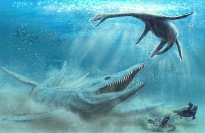 波蘭挖出上龍化石 比虎鯨還大