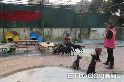台南規劃設立動保敎育園區