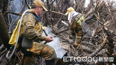 台東林管處招募森林護管員 報名至12月9日