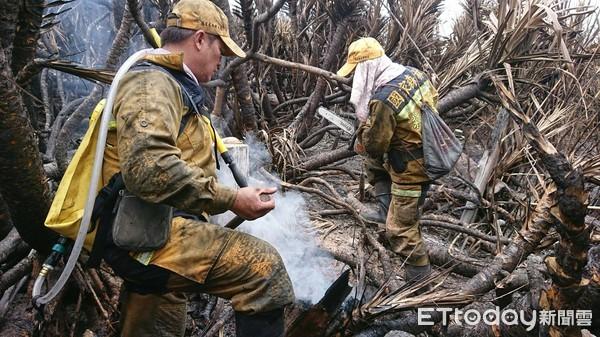 台東林管處招募森林護管員3名 通訊報名至12月9日止