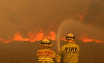 澳洲野火仍肆虐 3屁孩加碼縱火