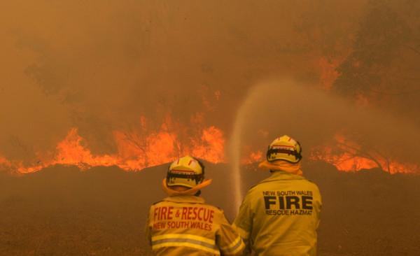 ▲▼澳洲新南威爾士野火(New South Wales)。(圖/路透)