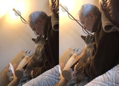 失智爺抱貓親親 背後故事有洋蔥