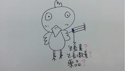 大學生簡單圖解:雞快速生長的原因