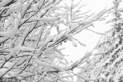 黑龍江零下40度創新低 觀光熱度反增