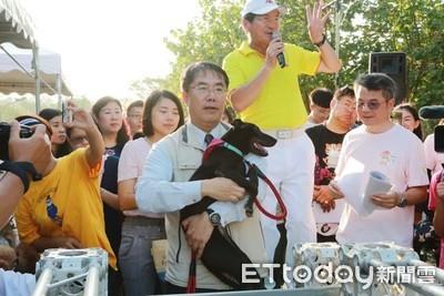 台南寵物運動趴