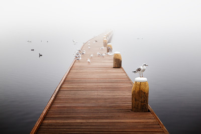攝影師用沉默、平靜捕捉眼前美景