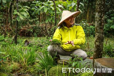 《保護地球・缺你不可》濕地專家陳德鴻打造中途之家 不收毛小孩只收「台灣原生種」