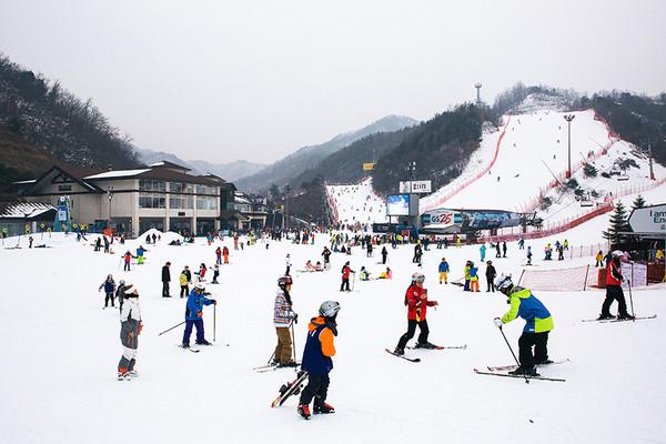 ▲▼伊利希安渡假村滑雪場。(圖/伊利希安渡假村提供)