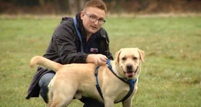 PTSD患者養服務犬 卻慘遭餐廳趕出門