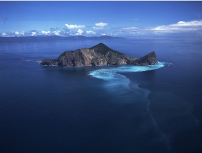 龜山島封島3個月 撒下原生百合花種子