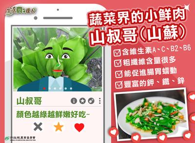 蔬菜界小鮮肉「山蘇」粗纖維量爆多