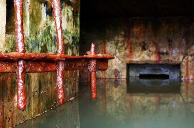 紐約下水道堵塞 汙水夾雜排泄物流進家