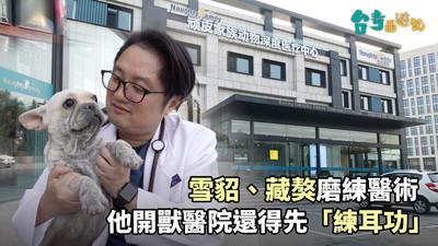 台青西遊記 挑戰醫術的獸醫師