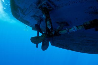潛水男被大船撞到 螺旋槳絞斷手臂
