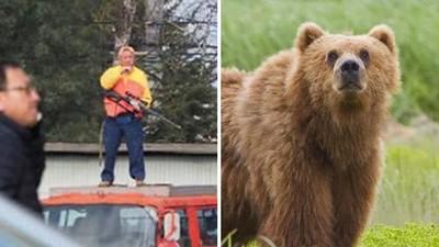母熊「誤闖人類社區」找食物給幼熊!警方圍捕射殺,民眾看牠斷氣鼓掌叫好