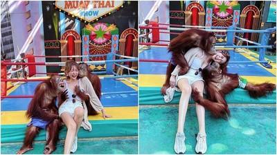 正妹合照2猩猩遭「強吻狂揉胸」!