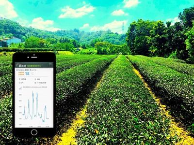 鴻海攜手富鴻網、亞太電信 打造台東六級智能農業