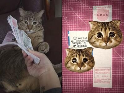 發票繞貓頭就中獎!一堆貓奴驗證