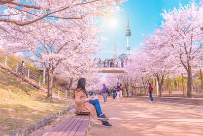 春遊賞花心花朵朵開就是要出國!
