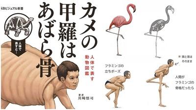 太獵奇!《用人體表現的動物圖鑑》超衝擊畫面 讓你秒學會動物小知識