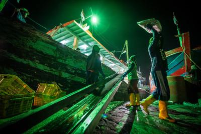苛扣薪水還施暴!台遠洋漁船爆欺壓外籍漁工
