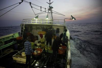 外籍漁工被虐待、扣薪!漁業署挨批窮忙後回應:違法行為絕不寬貸