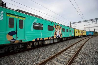 老虎陪搭火車!新竹動物彩繪列車開跑