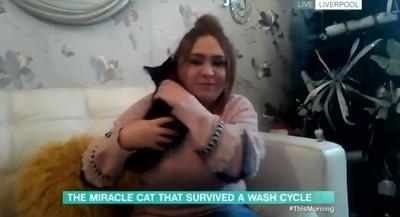 愛貓鑽洗衣機攪20分鐘...媽CPR救回
