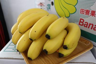 香蕉收入保險販售 請蕉農踴躍投保