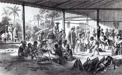 教師失職 要國小生計算奴隸的價值