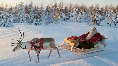 聯合國認證的「聖誕老人故鄉」!芬蘭絕美聖誕村 住浪漫小木屋還能洗桑拿