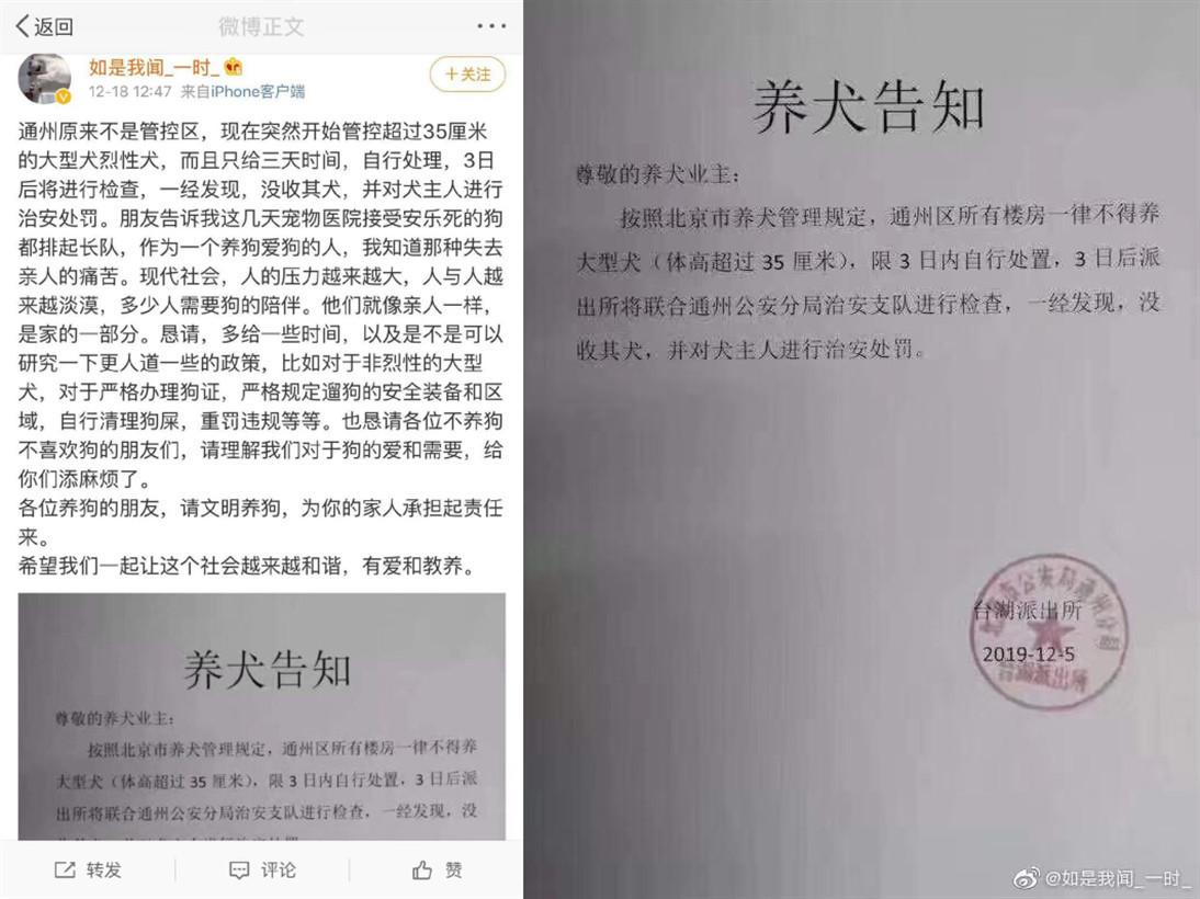 北京限狗令…網傳要求撲殺愛犬 警方否認:要求3天內轉移 - GamblePlus