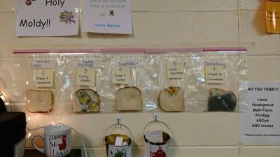 美國小學老師用發霉麵包防流感!
