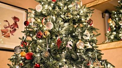 聖誕節笨蛋才過!麻州法令禁止過聖誕:杜絕暴飲暴食、濫交