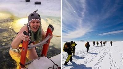 南極罕見大量徵才!「食宿全包+百萬補助」資方:工作累了一起看企鵝吧