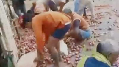 賣菜貨車翻了 貧民搶光「數噸洋蔥」!司機流血受困沒人救…