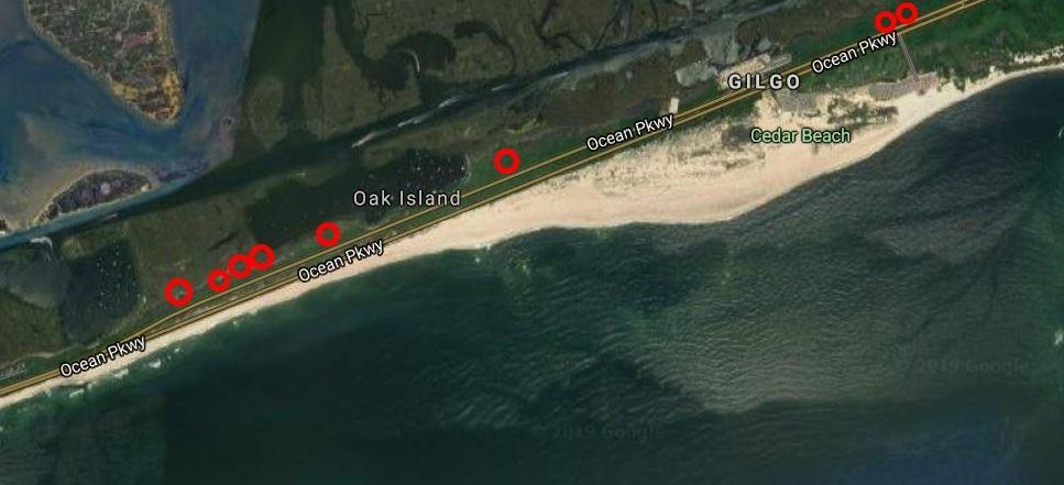 ▲長島殺手。(圖/翻攝自Google Map)